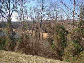2076 Turners Landing Road, Russellville TN