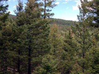 3 Doe Run Road, Eagle Nest NM