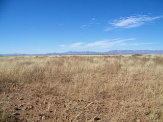 40.26 Ac N Saddle Mount Road, McNeal AZ