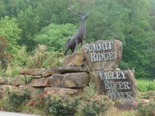 Lot 14 Smokey Mtn Ridge, Murphy NC