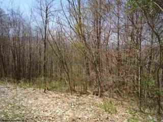 2 Stone Camp Meadows Road, Dryfork WV