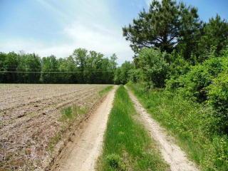 Ridge Road, Farnham VA