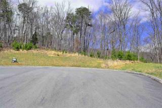 8026 Mountain Ridge Drive, Mooresburg TN