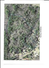 Trail A1 Pettigrew, Starr SC