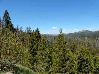 Top Of Stemple Pass Road, Lincoln MT