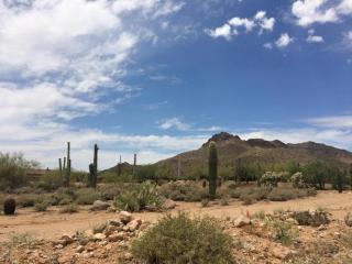 2532 North Meridian Road #3, Apache Junction AZ