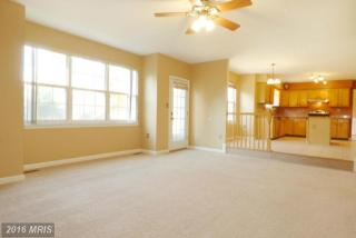5110 Tinkers Creek Pl, Clinton, MD 20735