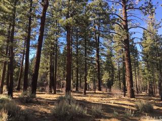 1033 Wilderness Drive, Big Bear City CA