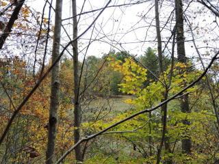 1 Barnyard Lane, Green Mountain NC