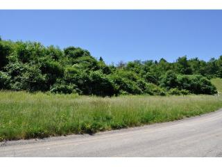 105 Field Brook Lane #2, Gibsonia PA