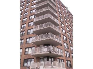3121 Middletown Road #1B, Bronx NY