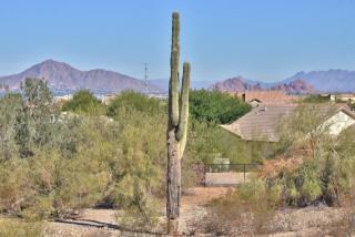 3912 East Beverly Road #5, Phoenix AZ