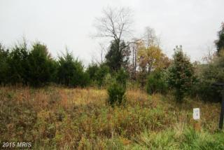 40992 Redwing Song Lane #4, Lovettsville VA