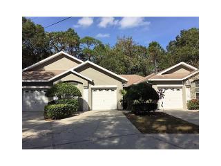 4343 Lakeshore Drive, Palm Harbor FL