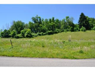 107 Field Brook Lane #3, Gibsonia PA