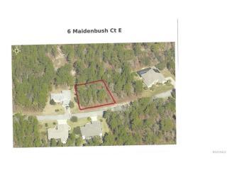 6 Maidenbush Court East, Homosassa FL