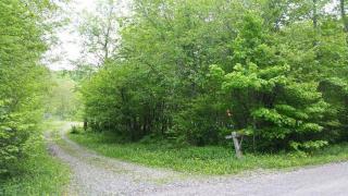 615 German Hollow Road, McDonough NY