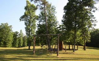 LT11 Creek Camp Road, Ellijay GA