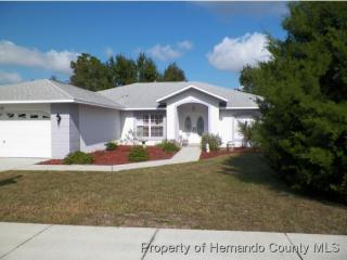 11031 Audie Brook Drive, Spring Hill FL