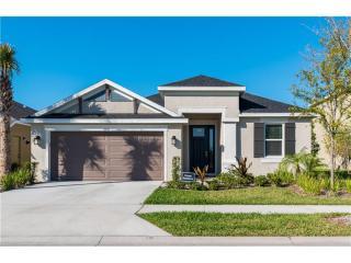 11610 Orange Palm Way, Tampa FL