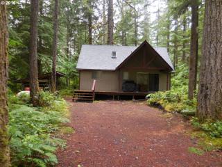 Cabin 119 Northwoods, Cougar WA