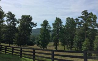 LT8 Joseph Anderson Trail, Ellijay GA
