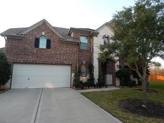 9406 Emerald Lakes Drive, Rosharon TX