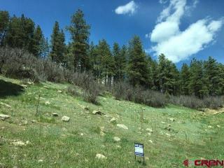 1169 Bear Creek Road, Bayfield CO