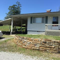 1186 Scenic Lakeview Dr, Spring City, TN 37381