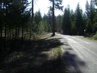 100 Trestle Creek Drive, Saint Regis MT