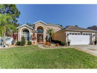 13733 Antler Point Drive, Tampa FL