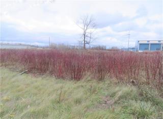 6298 Dean Parkway, Ontario NY