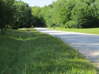 5 Acre Lot Sylvia Avenue, Plymouth Township OH