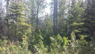 18112 East Pine Needle Way, Palmer AK