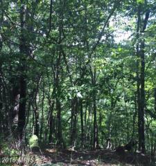 369 Willow Lane, Mount Jackson VA