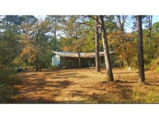 527 Pine Valley Loop, Smithville TX