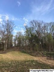 3977 Hawks Way Northeast, Huntsville AL
