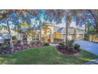 4969 Pointe Cir, Oldsmar, FL