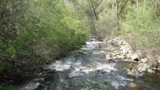 43813 South Fork Drive, Three Rivers CA