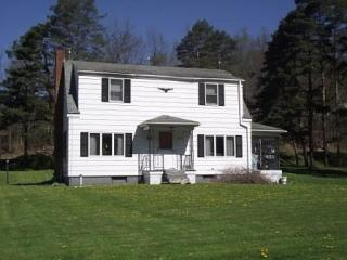17513 Bennetts Valley Highway, Force PA