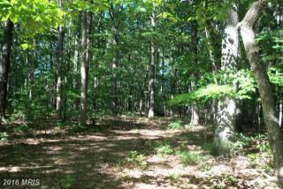 78 Tall Pines Drive, Mineral VA