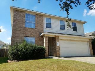 20219 Ribbonwood Point Court, Tomball TX