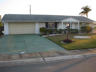 1518 Arrowhead Drive, Sun City Center FL