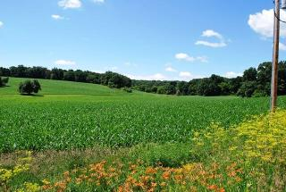 74.19 Ac County Road G, Springdale Town WI