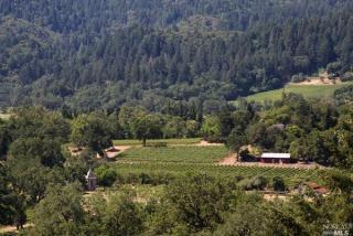 Silverado Trail, Saint Helena CA