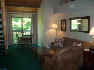 166 Mountain Inn Condos, Nellysford VA