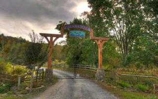 LT 17 Lt 17 River Escape Drive, Cherry Log GA