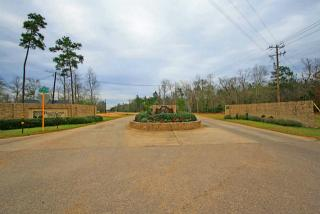 4117 North Duck Creek Road, Cleveland TX