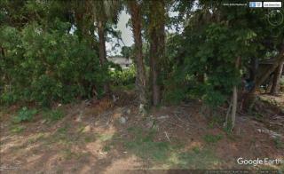 4480 Piedras Street, Cocoa FL