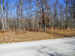 Lot 179A Deer Run, Spencer TN